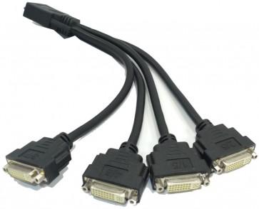 Matrox F16104-05 KX-20 to 4-Way DVI Splitter Cable